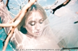 Alex Lake Photography